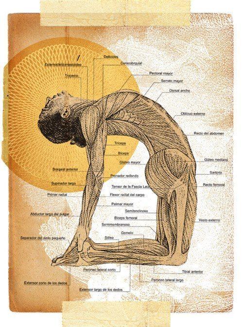exercice du yoga camel pose comment faire et quels sont ses avantages virtual fitness. Black Bedroom Furniture Sets. Home Design Ideas